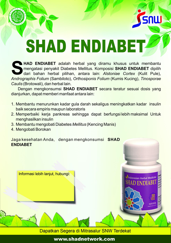 SNW Brosur SHADEndiabet