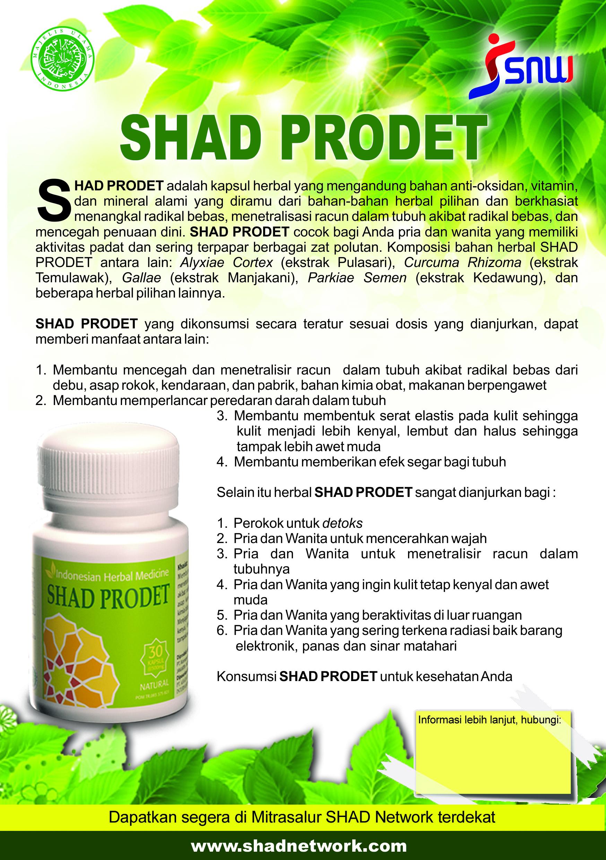 SNW Brosur SHADProdet